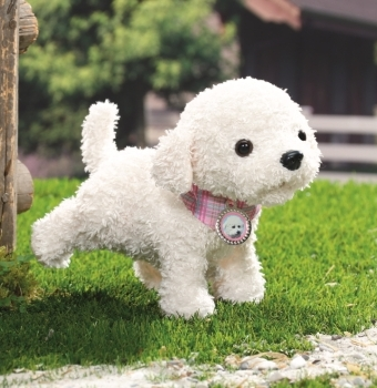 Baby born pup