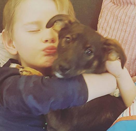 huisdieren goed voor de ontwikkeling van kinderen